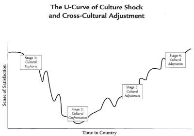 Culture_Shock_Graph