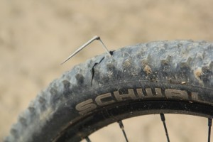 thorn in tire